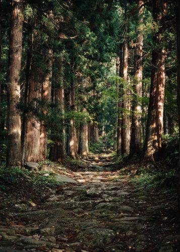 Sanctuaire de Kosuge, village de Kosuge, près d'Iiyama, préfecture de Nagano, Japon