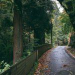 Découvrir les montagnes de la préfecture de Toyama à vélo