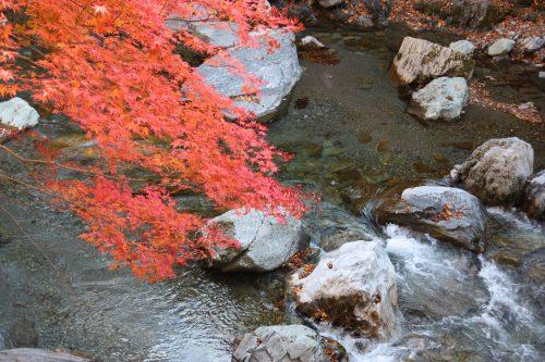 Vallée d'Iya, préfecture de Tokushima, Shikoku, Japon