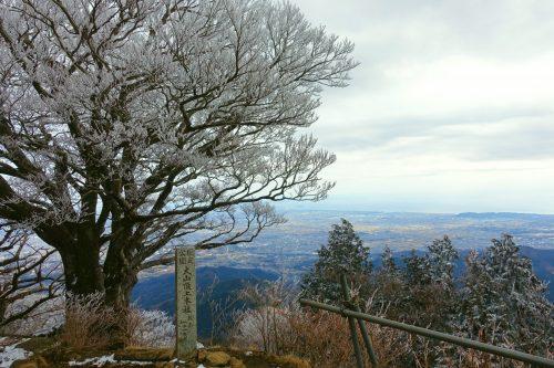 Arbres couverts de givre et point de vue depuis le Mt Oyama, préfecture de Kanagawa, Japon