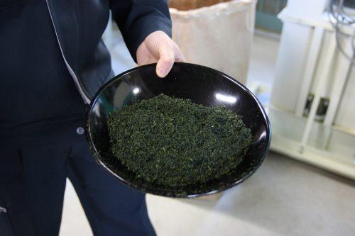 Thé vert japonais tout fraîchement préparé dans une usine de thé à Higashisonogi, préfecture de Nagasaki