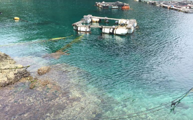 Eaux turquoises Fukashima