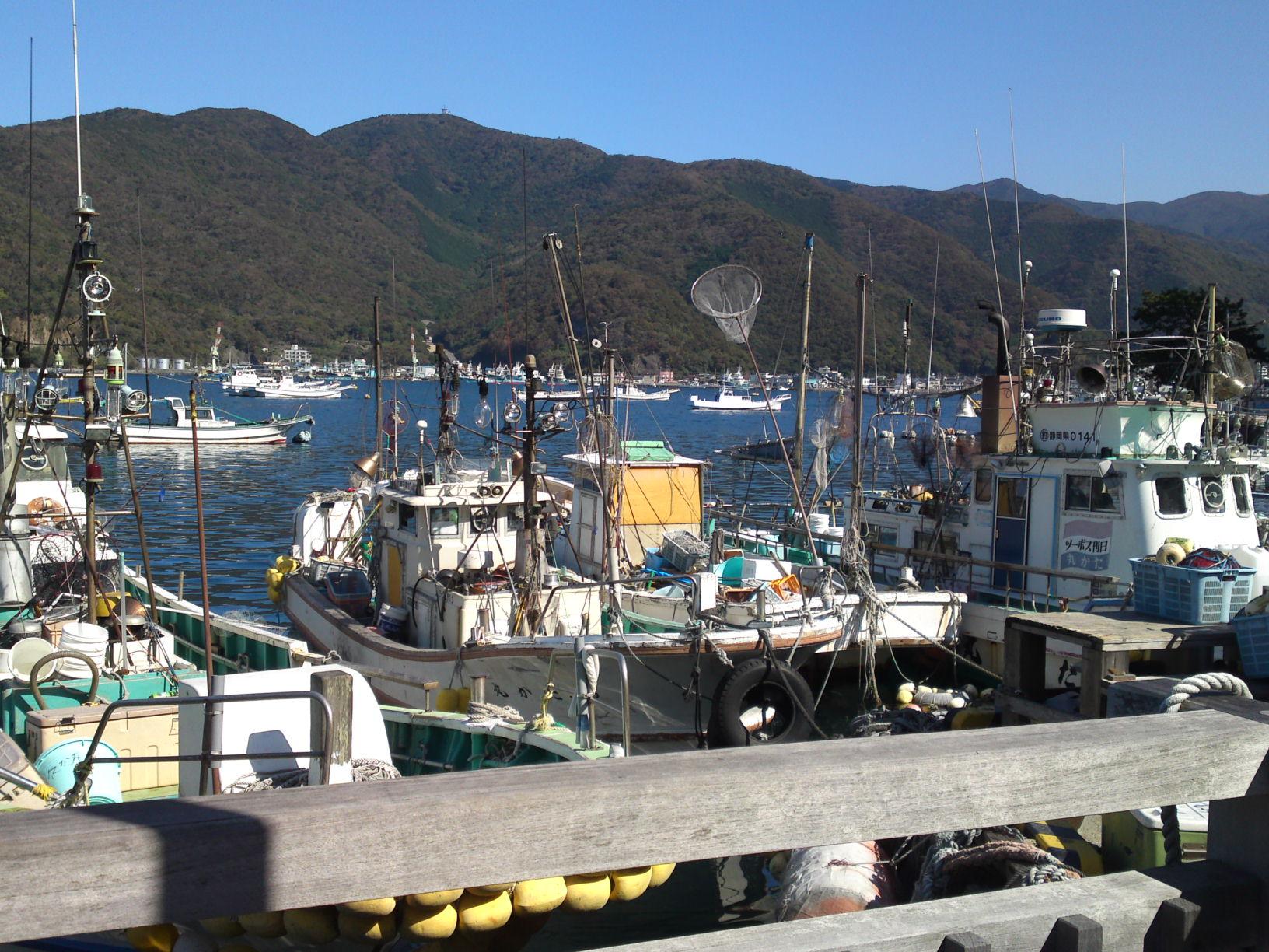 Heda Izu Peninsula Mount Fuji view beach crab museum fishing boat