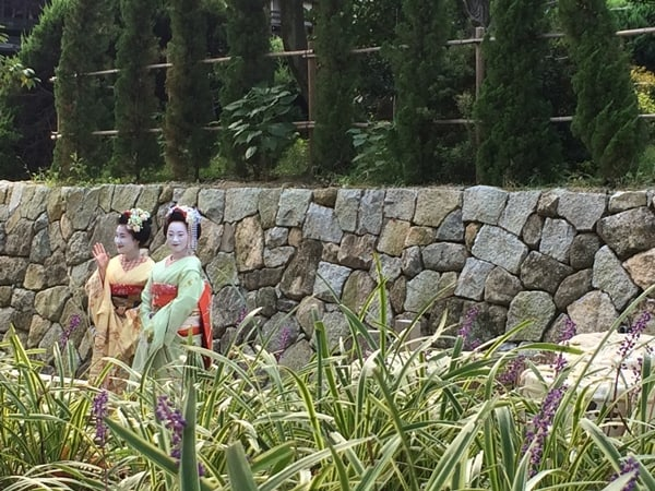Maiko are seen in Kyoto, a part of traditional Japanese culture