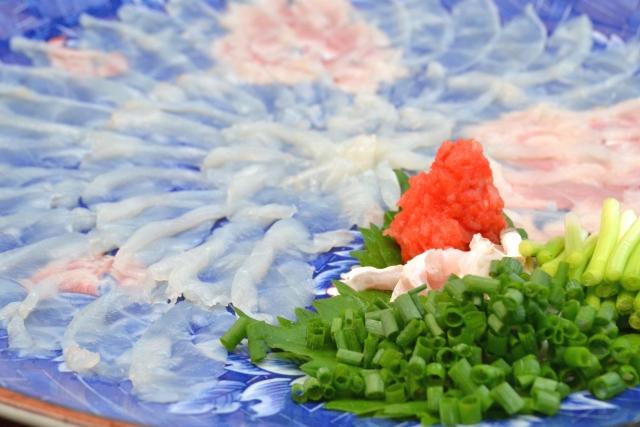 fugu,fish