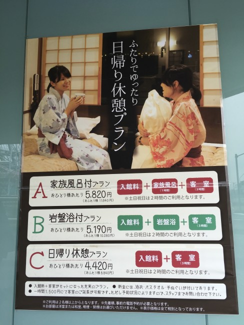 We'll be provided with various types of onsen and ryokan plans