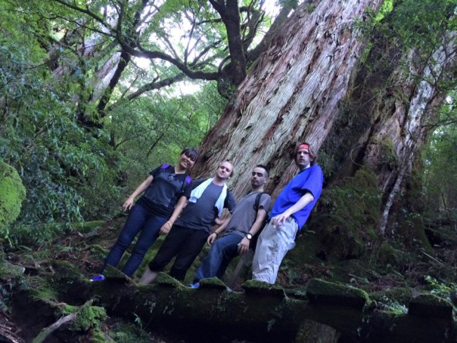 Four friends by that famous Yakushima tree, the Yakusugi