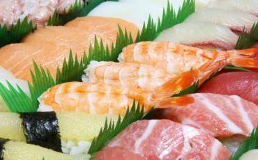 sushi,seafood,fish,sashimi,food,cuisine,gastronomy