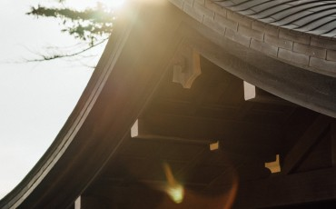 Kamakura Day Trip: Tsurugaoka Hachimangu