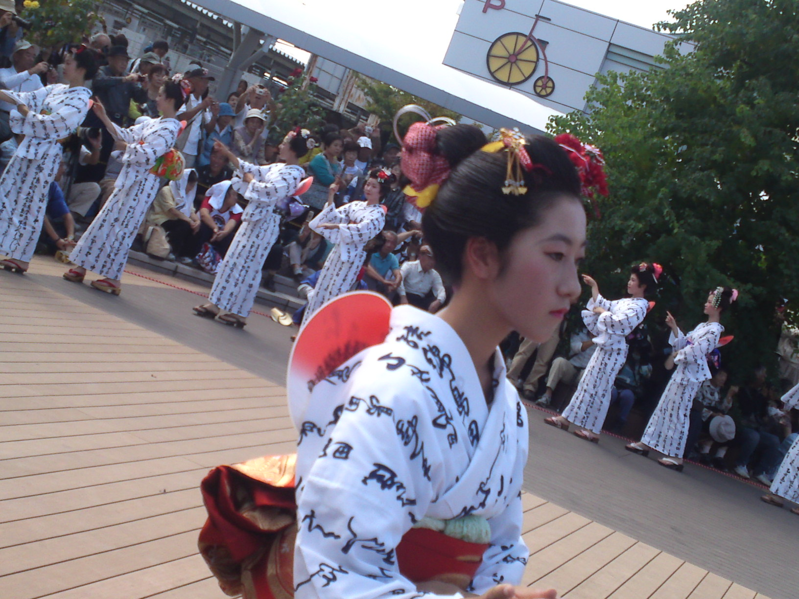 Shimada,hair,festival,hairstyle,style,knot,Japan,tourism