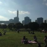 Yokohama Parks and Cosmo World