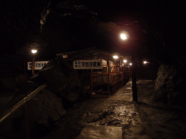 Aokigahara forest at night