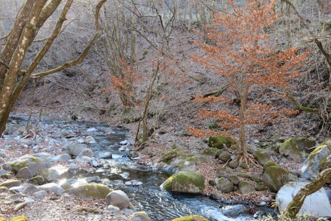 A view hiking by Tyouji Falls, one waterfall among many around Nikko