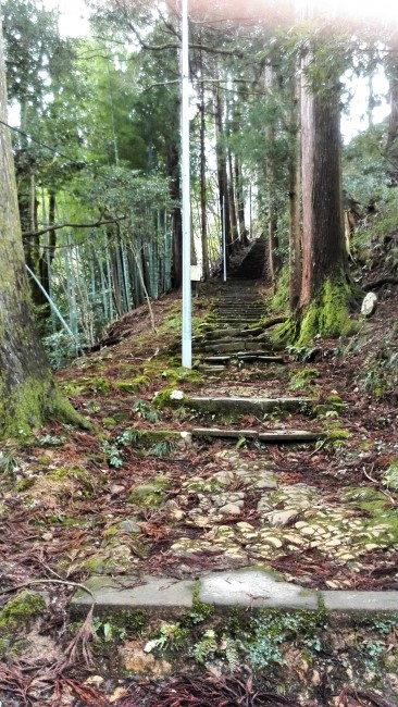 hiking trail in Onsen-ji Temple