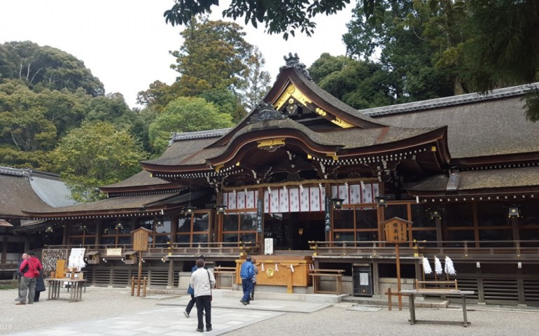 shinto,shrine,omiwa,nara,forest