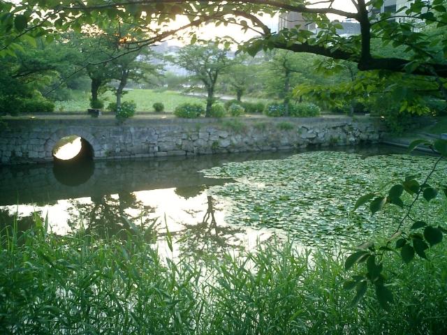 A view of Maizuru Park alongside Fukuoka Castle grounds