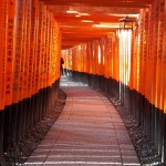 Fushimi Inari Taisha, a magnificent Shinto shrine