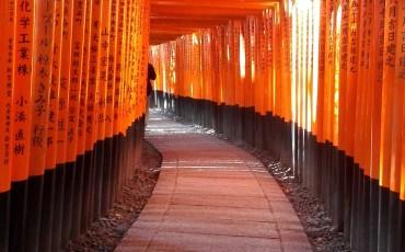 Fushimi Inari Taisha, Shrine, Hike, Religion, Kyoto, Mountain, Gate, Shinto, Torii
