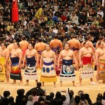 Sumo, the way you will get the ticket on the budget?!