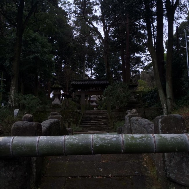 Seen near Daibutsu hiking course, Jochi-ji temple, Kamakura