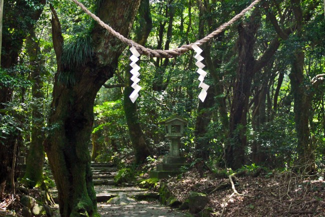 Paper tied to rope hanging from above on the way Hananonamida shrine on Kinpo Mountain.