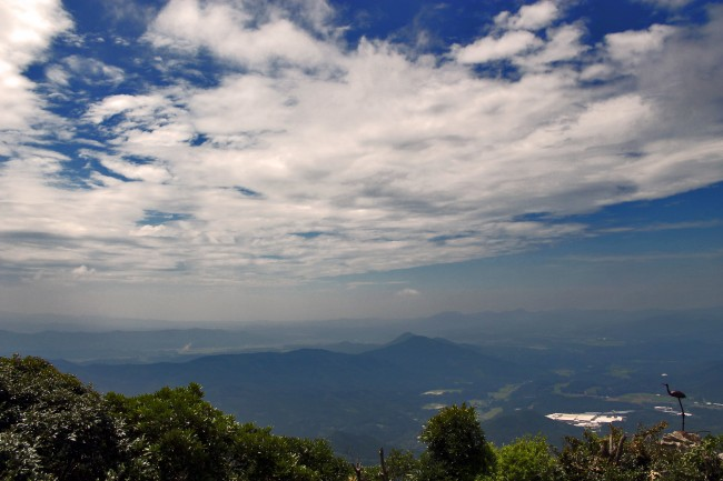 View of sky and trees from Kinpo Mountain not quite at the shrine.