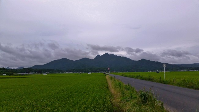 Green field in Konohanakan with a stree to the side and a mountainous landscape far in the distance before reaching the restaurant.