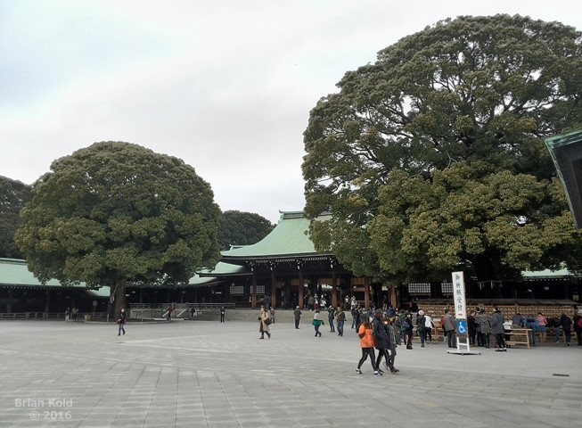 Tokyo,shrine,Meiji,park,Yoyogi,Harajuku,shinto