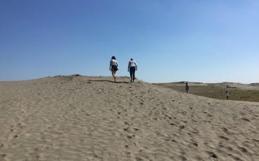 Nature, Sand, Sand dunes, Beach, Sea, Pacific Ocean, Shizuoka, Hamamatsu, Nakatajima