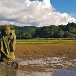 Looking for the Rice Gods – a Cycling Tour in Minamisatsuma