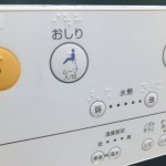 How do I use a Japanese toilet?