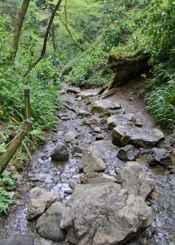 Biwa waterfall hiking trail in Mt. Takao