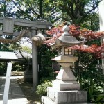 Okusawa shrine: A secret Shinto garden