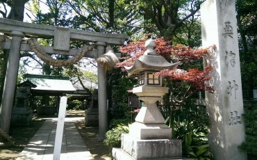 Okusawa shrine entrance in Tokyo.