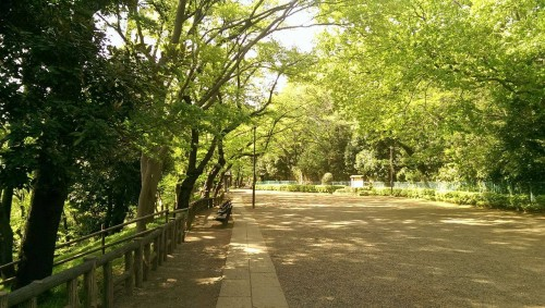 Park near Tamagawa river.