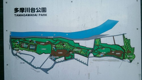 Park map near Tamagawa river.
