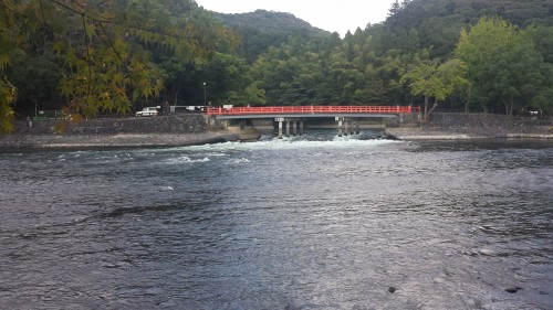 Uji is home to Byodin temple, tea, and a Museum