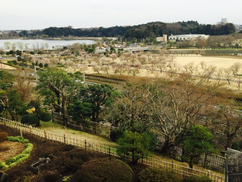The plum blossoms alongside Senba Lake as seen from Kairakuen Garden outlook spot Kobuntei house, Ibaraki prefecture
