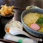 Sakurajima's Hinoshima Megumi-kan Rest Stop: Orange Noodles?!