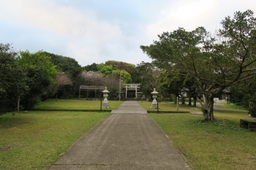 grounds of shrine in Yakushima