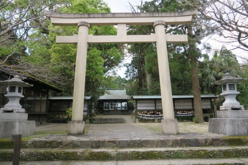 tori gate of shrine in Yakushima