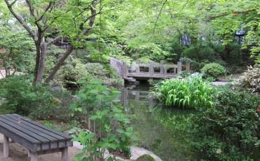 history,tea,garden,culture,tatami,hakata