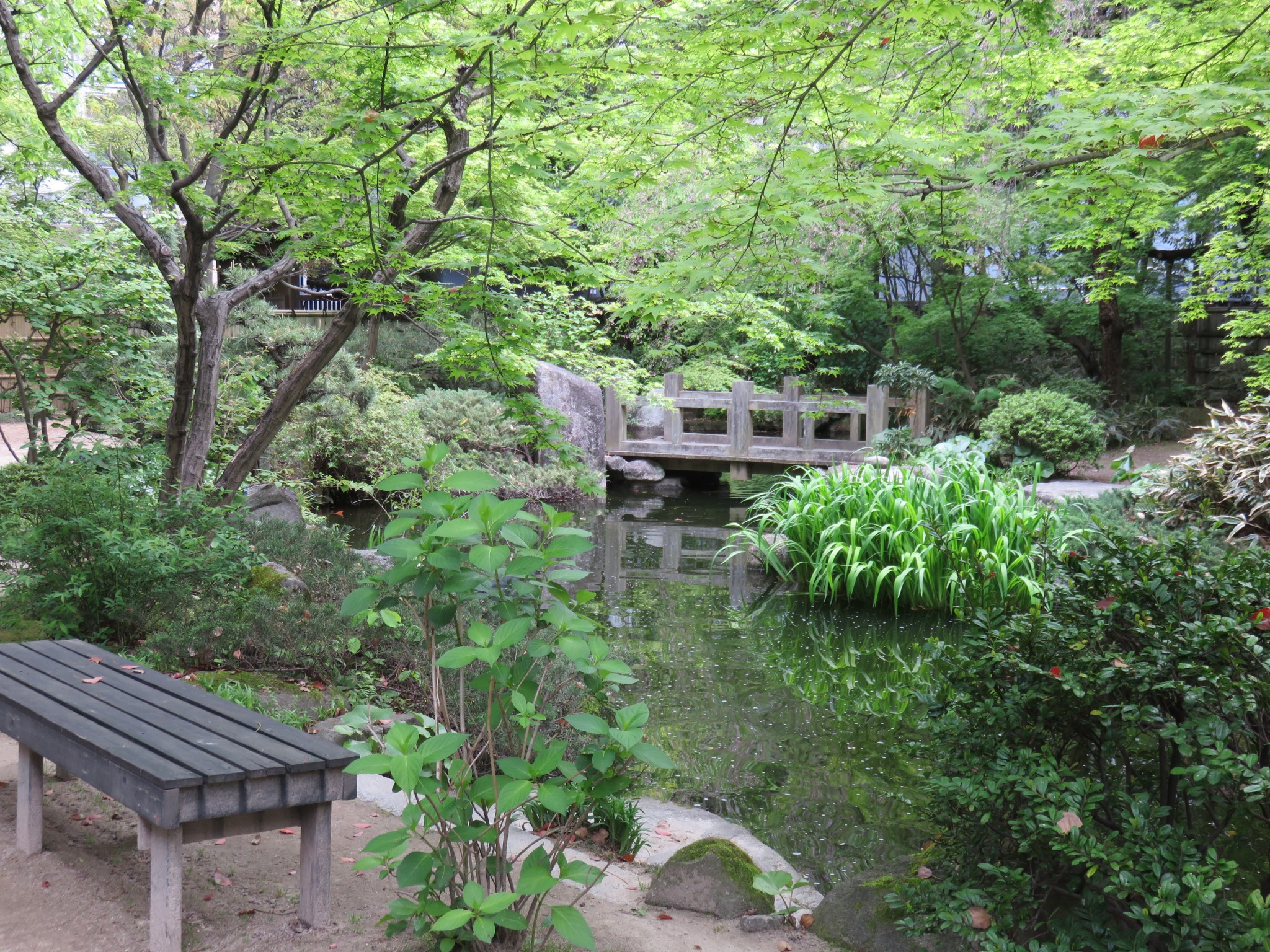 Traditional japanese gardens -  Relax In A Traditional Japanese Garden At Rakusuien