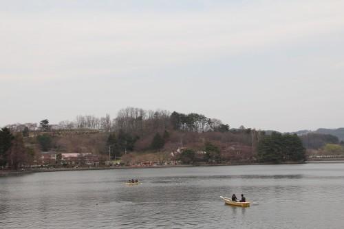 Lake near Morioka Castle with cherry blossom trees on the opposite shore.