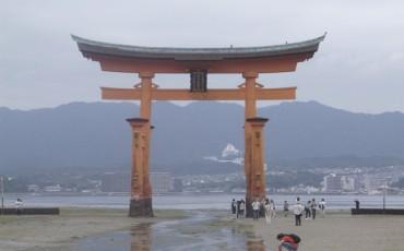 Miyajima,Deer,Torii,Gate,Shinto,Shrine,Island