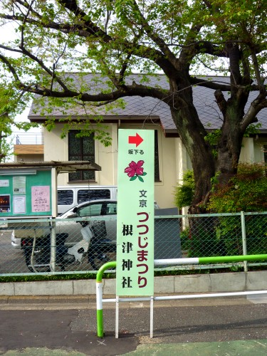 Signpost marking Nezu Shrine Azalea Festival, fine azalea garden throughout Tokyo