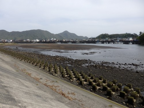 A view of the local area of Numazu, fish restaurants can be found around the Aquarium