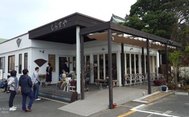 shirasudon,seafood,cuisine,Japanese,enoshima,kamakura,tokyo