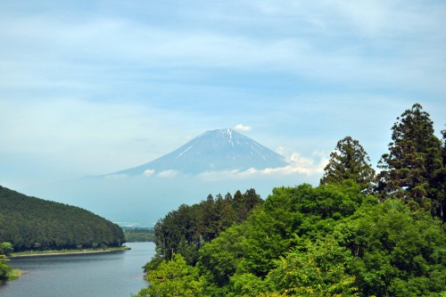 A lake and forest before the mountain of Fuji in Fujinomiya.