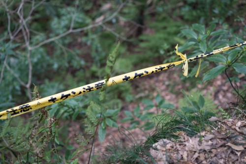 Yellow warning tape in Gionyama hiking course in Kamakura.